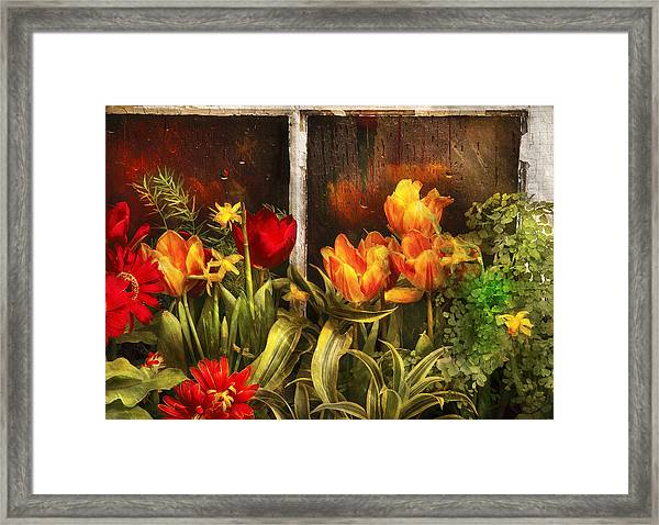 Flower - Tulip - Tulips In A Window Framed Print