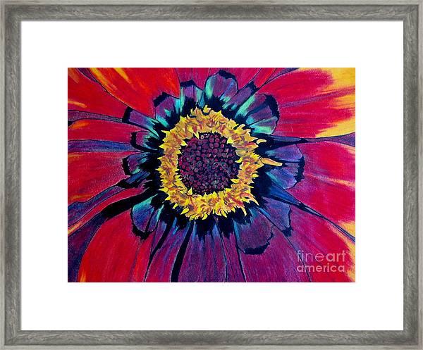 Flowerburst Framed Print