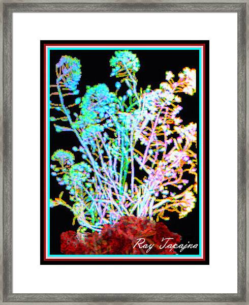 Flowers At Night Framed Print by Ray Tapajna