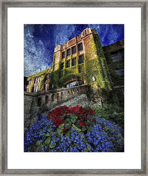 Flowers At Somsen Hall Framed Print