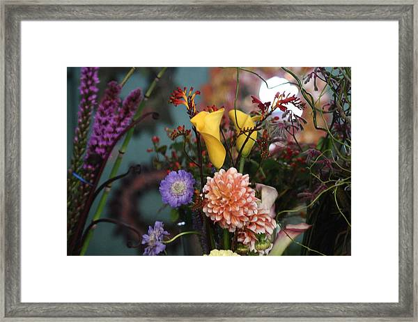 Flowers From My Window Framed Print