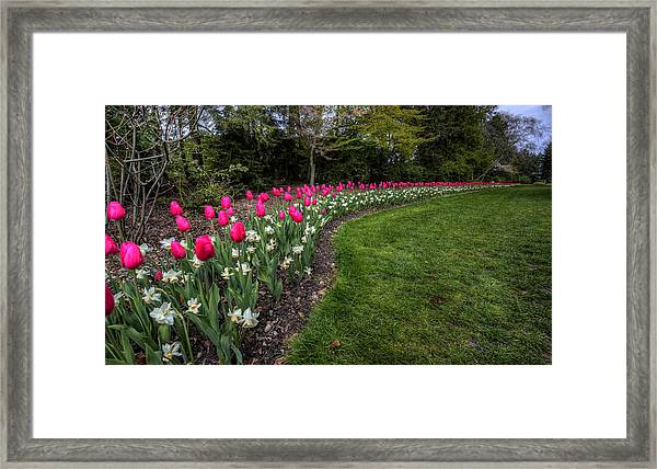 Flowers Of Spring Framed Print