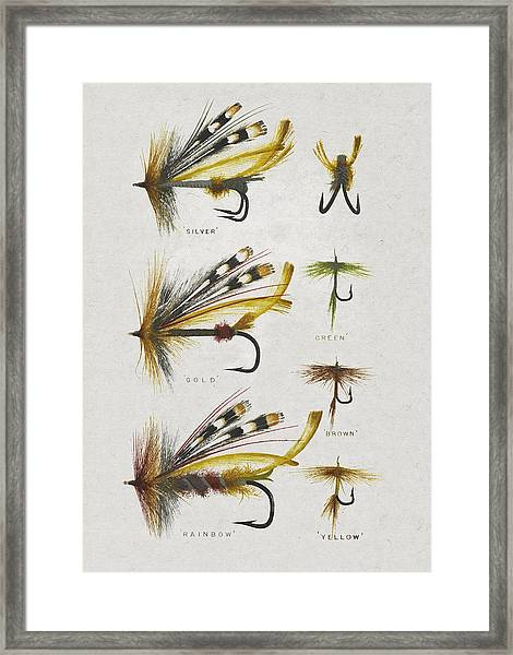 Fly Fishing Flies Framed Print
