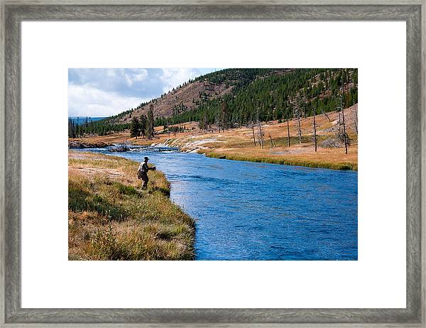 Fly Fishing In Yellowstone  Framed Print
