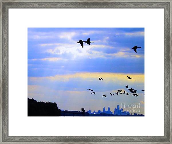 Fly Like The Wind Framed Print