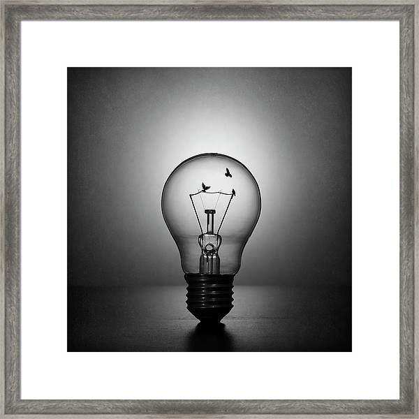 Fly To The Light Framed Print by Victoria Ivanova