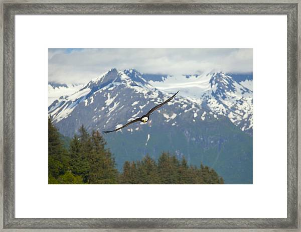 Flying Amongst The Mountains Framed Print by Tim Grams