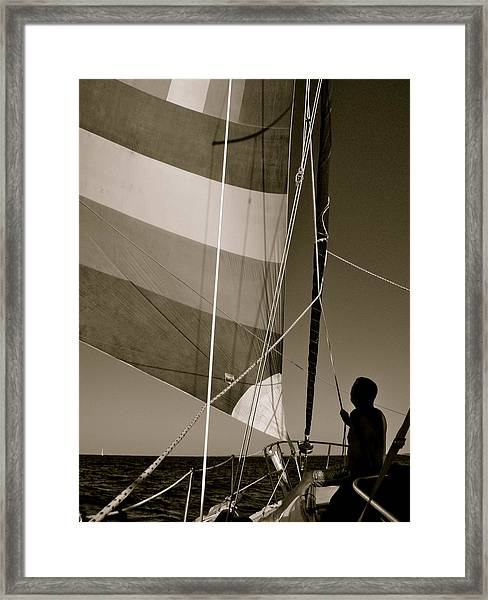 Flying II Framed Print