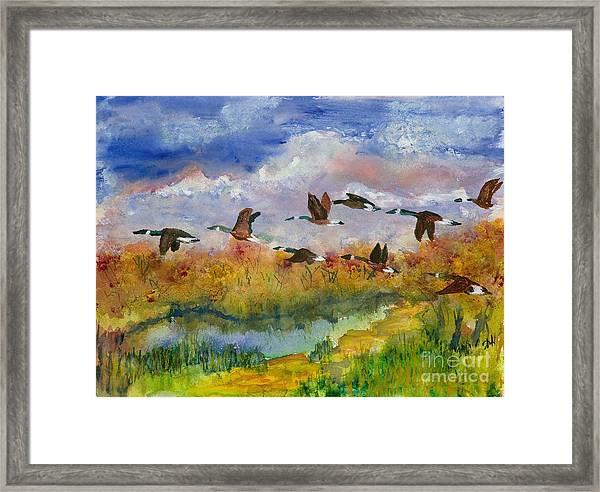 Flying South Framed Print
