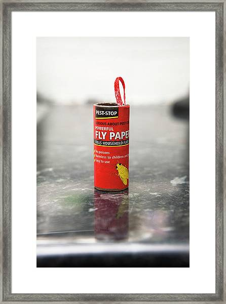 Flypaper Container Framed Print by Lewis Houghton/science Photo Library