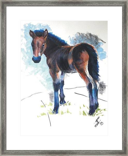 Foal Painting Framed Print