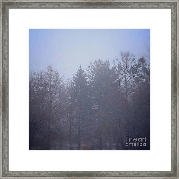 Fog And Mist Framed Print