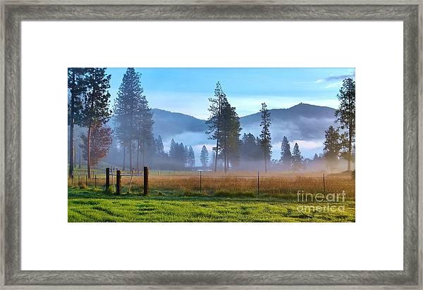 Fog Highlights Framed Print
