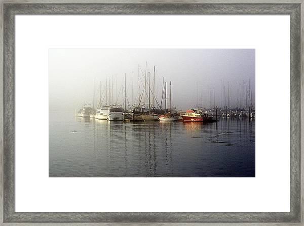 Fog Light In The Harbor Framed Print