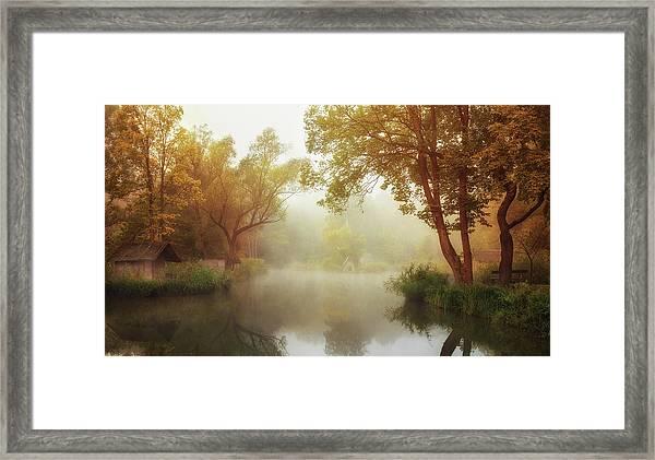 Foggy Autumn Framed Print by Leicher Oliver