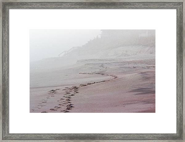 Foggy Beach At Dawn Framed Print