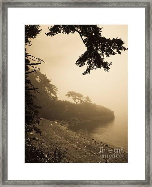 Foggy Beach Framed Print