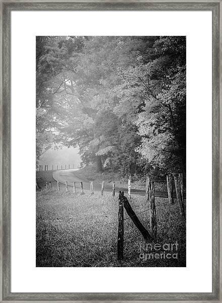 Foggy Loop Road Framed Print