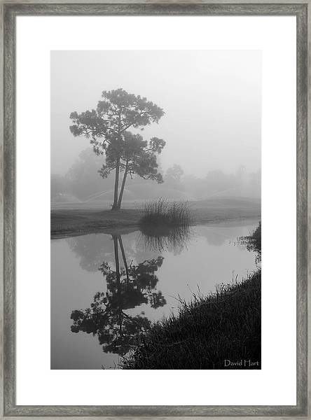 Foggy Morning 2 Framed Print