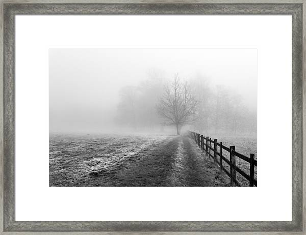 Foggy Morning. Framed Print