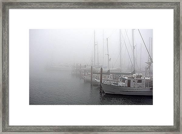 Foggy Morning In Charleston Harbor Framed Print