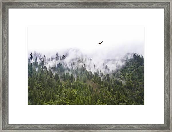 Foggy Mountain Framed Print