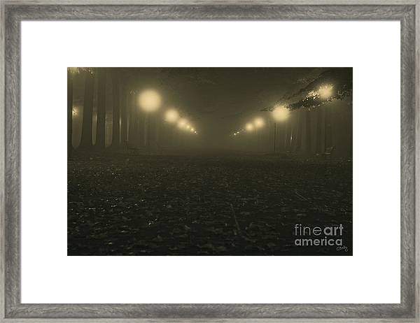 Foggy Night In A Park Framed Print