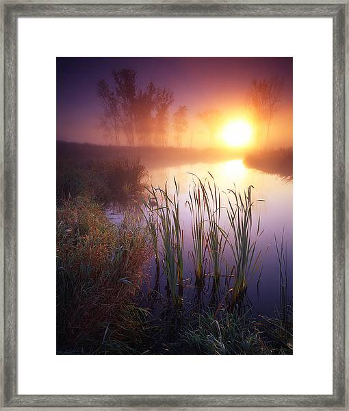 Foggy Sunrise Framed Print