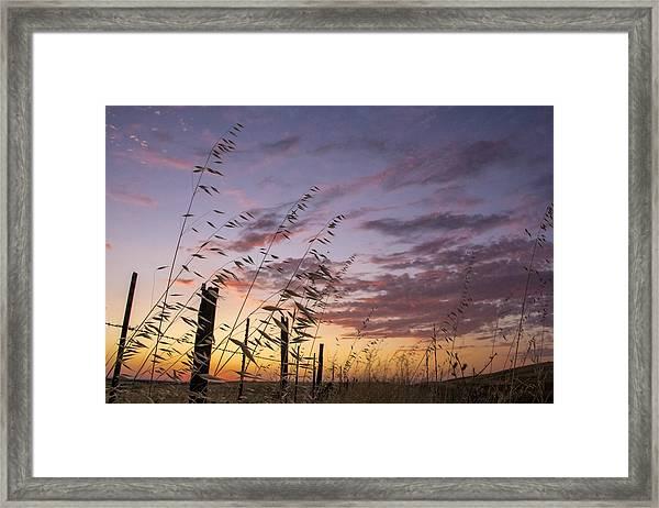 Folsom Sunset Framed Print