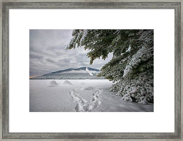 Footsteps To The Mountain Framed Print