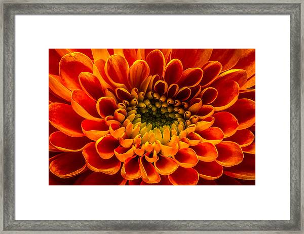 The Heart Of A Mum Framed Print