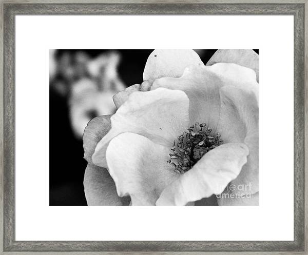 For You With Love Framed Print