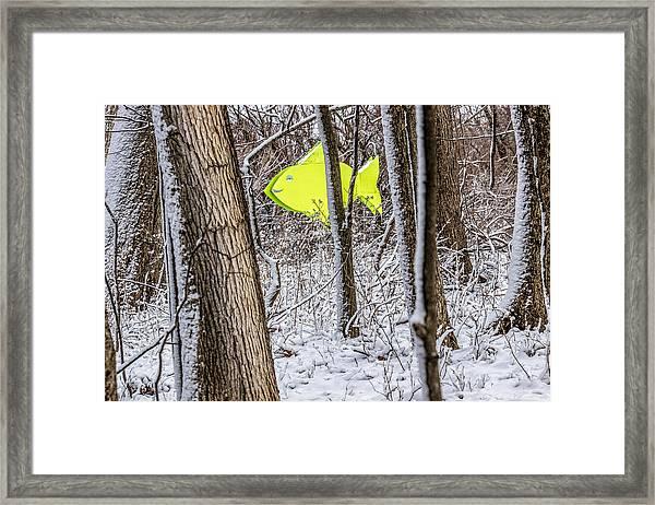 Forest Fish Framed Print