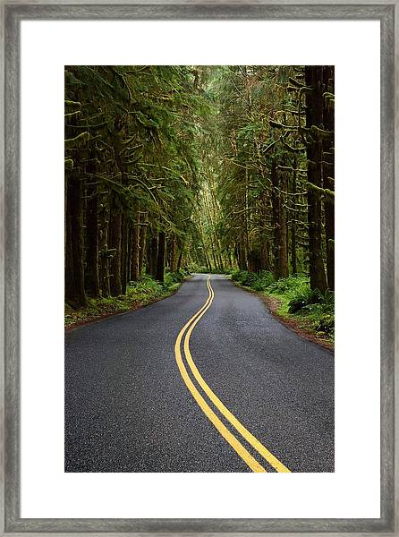 Forest Road Framed Print