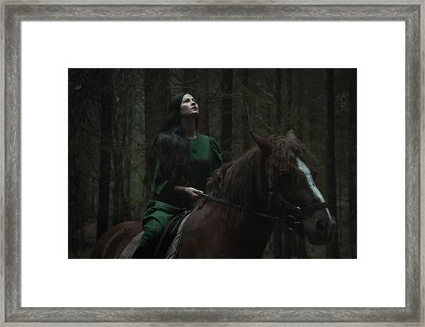 Forest Story Framed Print