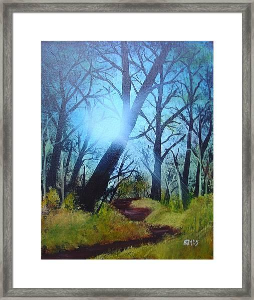 Forest Sunlight Framed Print