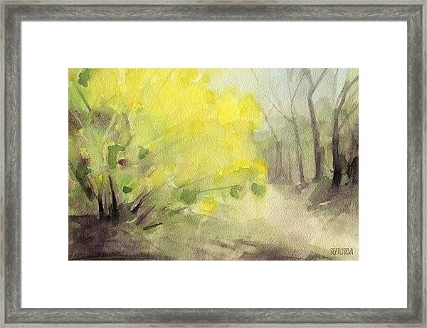 Forsythia In Central Park Watercolor Landscape Painting Framed Print