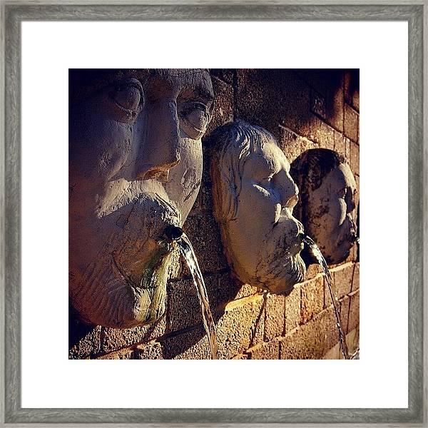 Fountain - Fl Framed Print