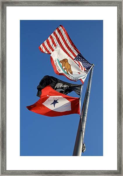 Four Flags 2013 James Warren Framed Print