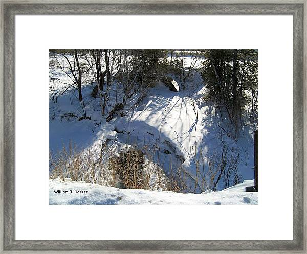 Fox Tracks And Culver Framed Print