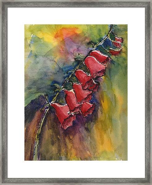 Foxgloves Framed Print