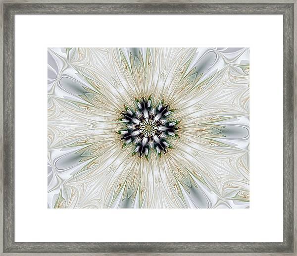 Fractal Desires Kaleidoscope Framed Print