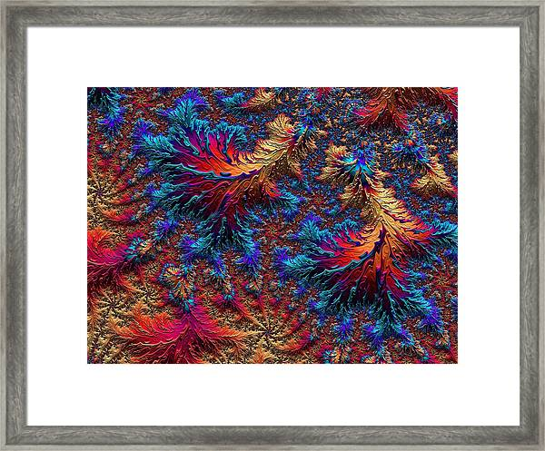 Fractal Jewels Series - Beauty On Fire II Framed Print
