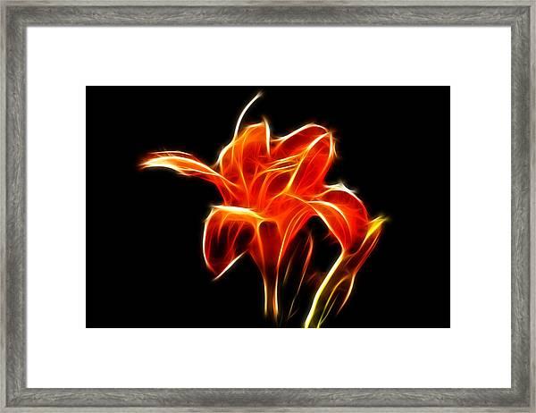 Fractaled Lily Framed Print