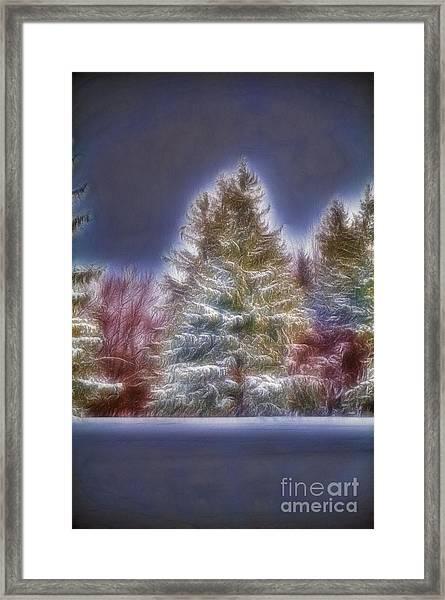 Fractalius Winter Pines Framed Print
