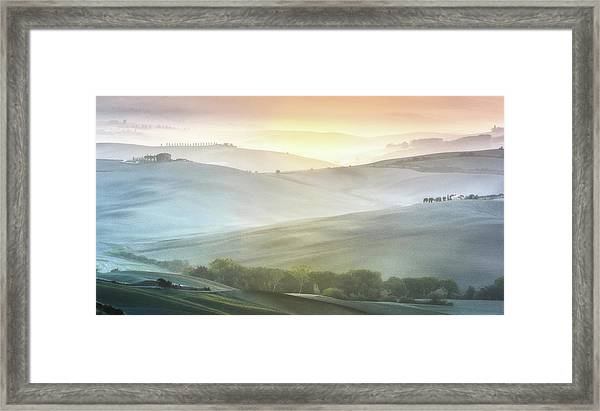 Fragile Sunrise Framed Print by Marek Boguszak