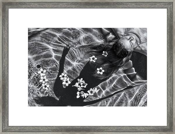 Frangipani Tree Framed Print by Gloria Salgado Gispert