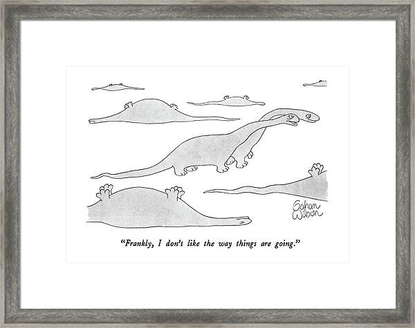 Frankly, I Don't Like The Way Things Are Going Framed Print