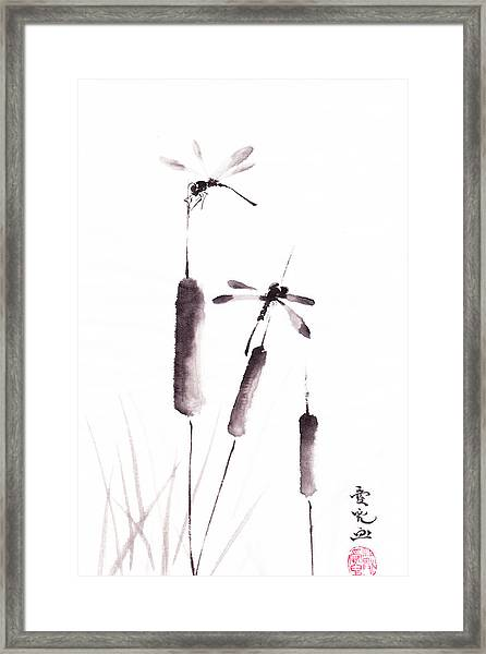 Free As The Dragonflies Framed Print