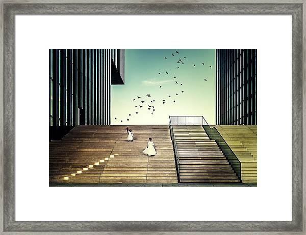 Free Like A Bird... Framed Print